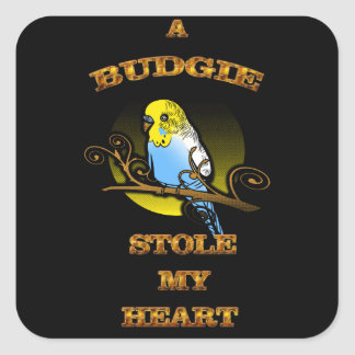 A Budgie Stole My Heart Square Sticker