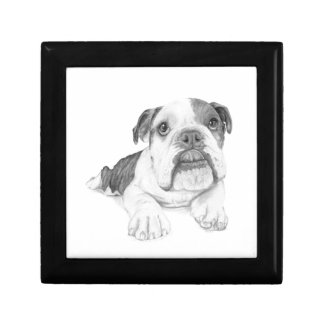 A Bulldog Puppy Drawing Keepsake Box