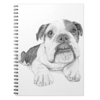 A Bulldog Puppy Drawing Spiral Note Book
