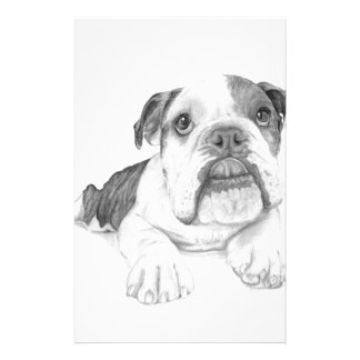 A Bulldog Puppy Drawing Stationery