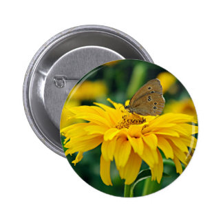 A butterfly on a yellow flower button