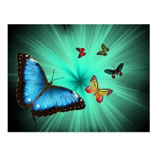 A Butterflys Journey Postcard