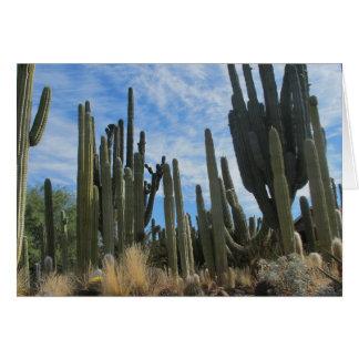 A Cacti Farm In Arizona Card