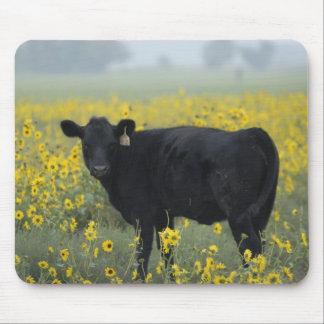 A calf amid the sunflowers of the Nebraska Mouse Pad