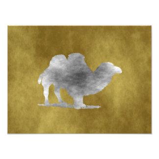 A Camel Art Photo
