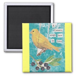 A Canary, Sings Best in Love Magnet