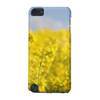 A canola field in spring iPod touch 5G cover