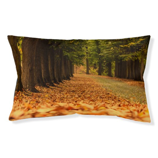 a carpet of colourful leaves on Outdoor Dog Bed cu