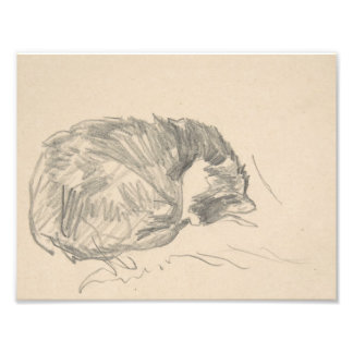 A Cat Curled Up, Sleeping by Edouard Manet. Photo Print