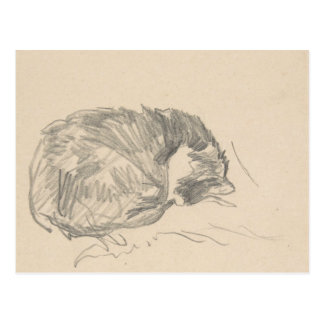 A Cat Curled Up, Sleeping by Edouard Manet. Postcard