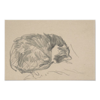 A Cat Curled Up, Sleeping by Edouard Manet. Poster