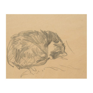 A Cat Curled Up, Sleeping by Edouard Manet. Wood Wall Art