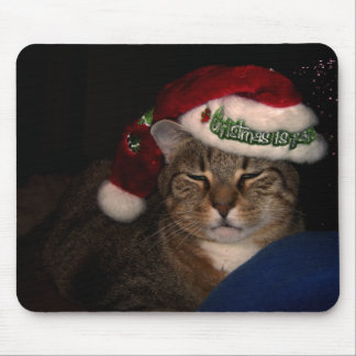 A Cat Dressed for Christmas Mouse Pad