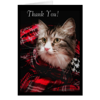 A Cat Lover's Thank You Note Card
