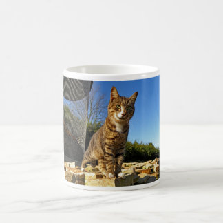 A Cat on Watch Mug