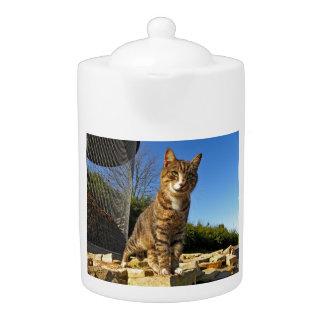 A Cat on Watch Teapot