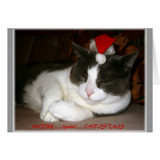 A Cat's Christmas Wish Card