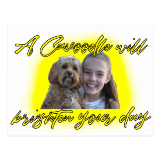 A Cavoodle will Brighten your Day. Postcard