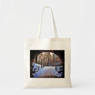 A Central Park Bridge In Winter