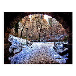 A Central Park Bridge In Winter Postcard