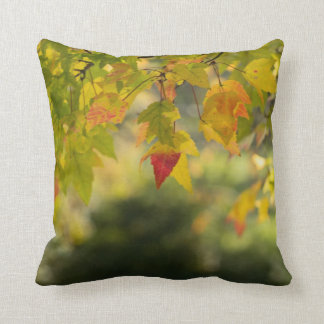 A Change Is Going To Come Throw Pillows
