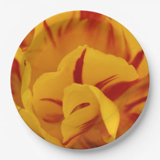 A Chaos of Red and Yellow: Triandrus Daffodils Paper Plate
