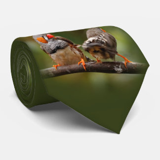 A Cheeky Pair of Zebra Finches Tie