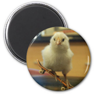A chick on  skateboard decorated magnet
