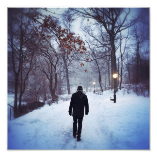 A Chilly Path In Central Park Art Photo