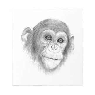 A Chimpanzee, Not Monkeying Around Sketch Notepad