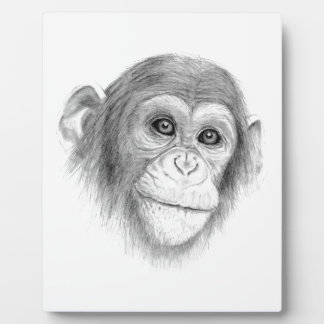 A Chimpanzee, Not Monkeying Around Sketch Plaque