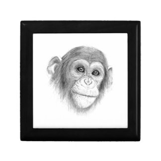 A Chimpanzee, Not Monkeying Around Sketch Trinket Boxes