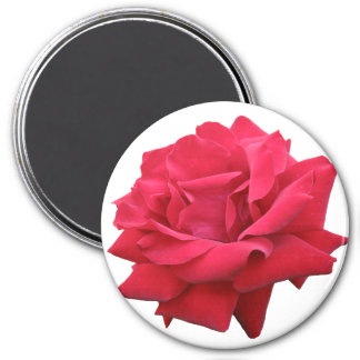 A Classic Red Rose Magnet
