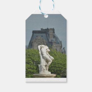 A classical marble statue in Paris Gift Tags