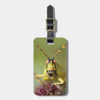 A close-up of an Elegant Grasshopper Travel Bag Tag