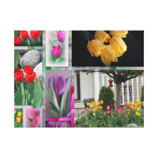 A Collage Of Beautiful Tulips Canvas Print