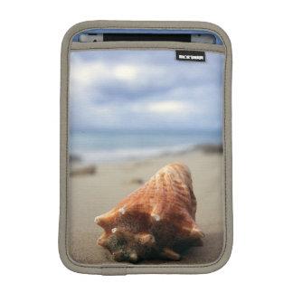 A Conch Shell On The Beach | St. Croix, Usvi iPad Mini Sleeve