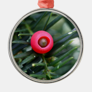 A cone of a yew (Taxus baccata) Silver-Colored Round Ornament