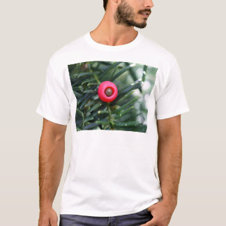 A cone of a yew (Taxus baccata) T-Shirt