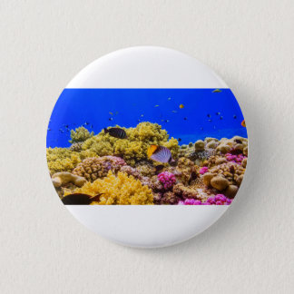 A Coral Reef in the Red Sea near Egypt 2 Inch Round Button