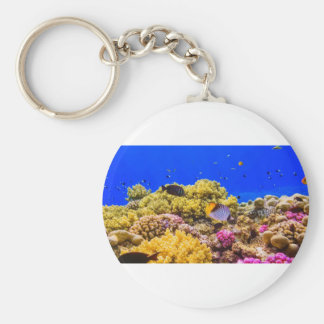 A Coral Reef in the Red Sea near Egypt Basic Round Button Keychain