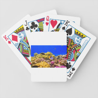 A Coral Reef in the Red Sea near Egypt Bicycle Playing Cards