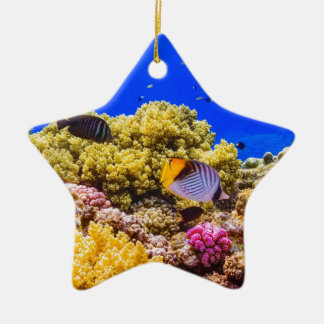 A Coral Reef in the Red Sea near Egypt Ceramic Ornament