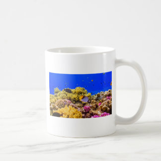 A Coral Reef in the Red Sea near Egypt Coffee Mug