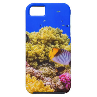 A Coral Reef in the Red Sea near Egypt iPhone 5 Case