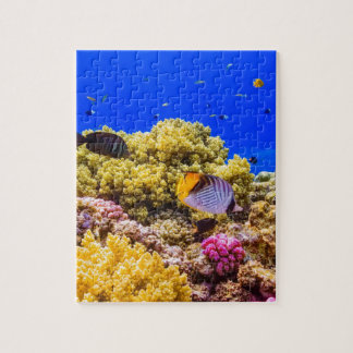 A Coral Reef in the Red Sea near Egypt Jigsaw Puzzle