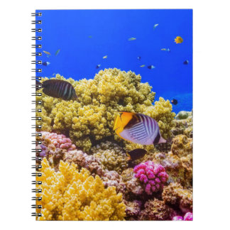 A Coral Reef in the Red Sea near Egypt Spiral Notebooks