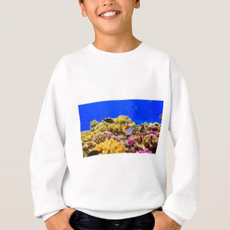 A Coral Reef in the Red Sea near Egypt Sweatshirt