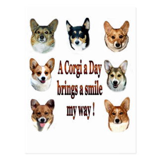 A Corgi a Day Brings a Smile 7 Postcard