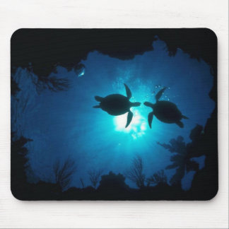 A couple of turtles mouse pad
